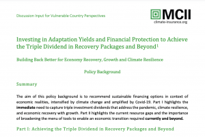 v20_Investing in Adaptation Yields and Financial Protection to Achieve the Triple Dividend in Recovery Packages and Beyond-min