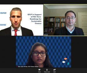 v20_blog_experts-gflp-in-support-of-net-zero-roadmap-for-sustainable-finance